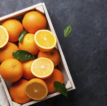 Naranjas Online de Valencia - Campos de Azahar