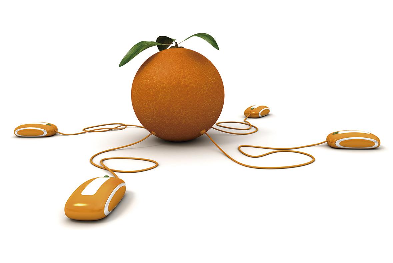 Donde comprar naranjas online - Campos de Azahar