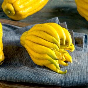Limón mano de Buda - Campos de Azahar