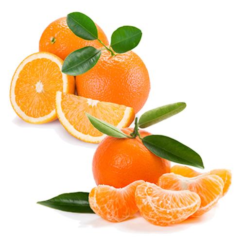 Caja de mandarinas y naranjas - Campos de Azahar