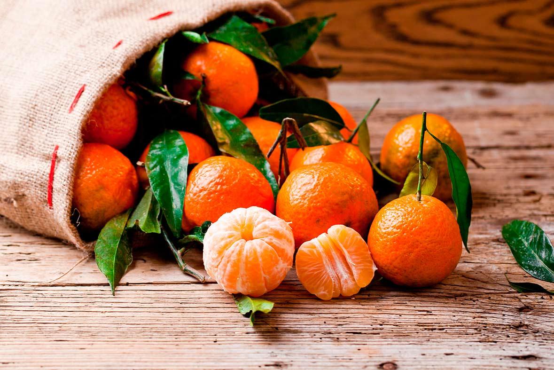 variedades de mandarinas clementina - campos de azahar