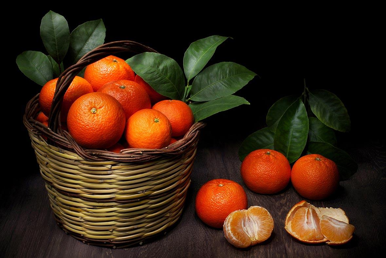 clemenvilla la reina de las mandarinas - campos de azahar