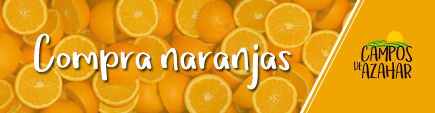 banner comprar naranjas - campos de azahar