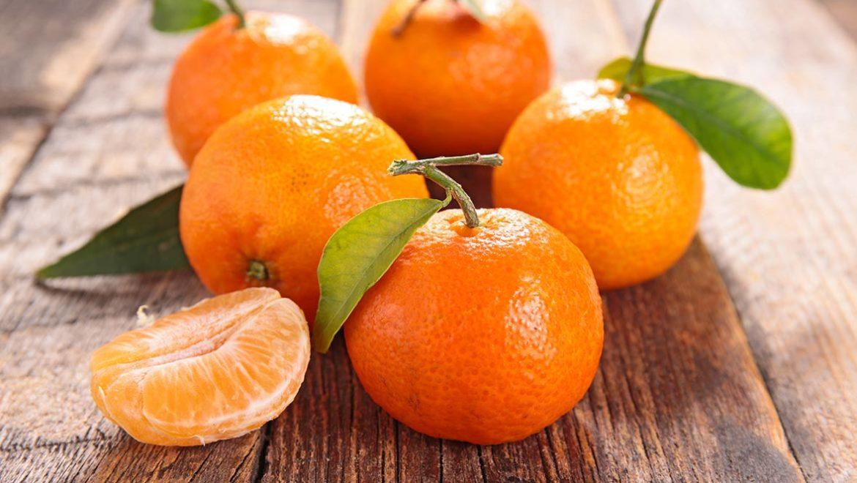 diferencias clementina mandarina - campos de azahar