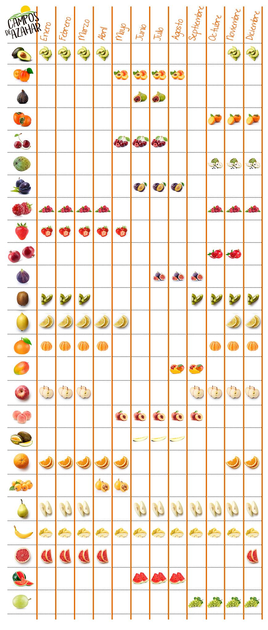 infografia fruta por meses - campos de azahar