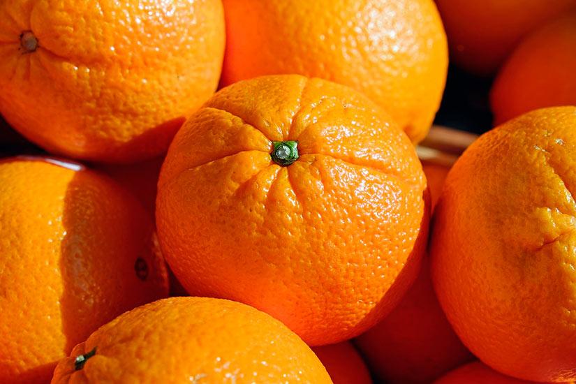 el origen de la naranja - campos de azahar