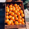 Mermelada Mandarina img2 - campos de azahar