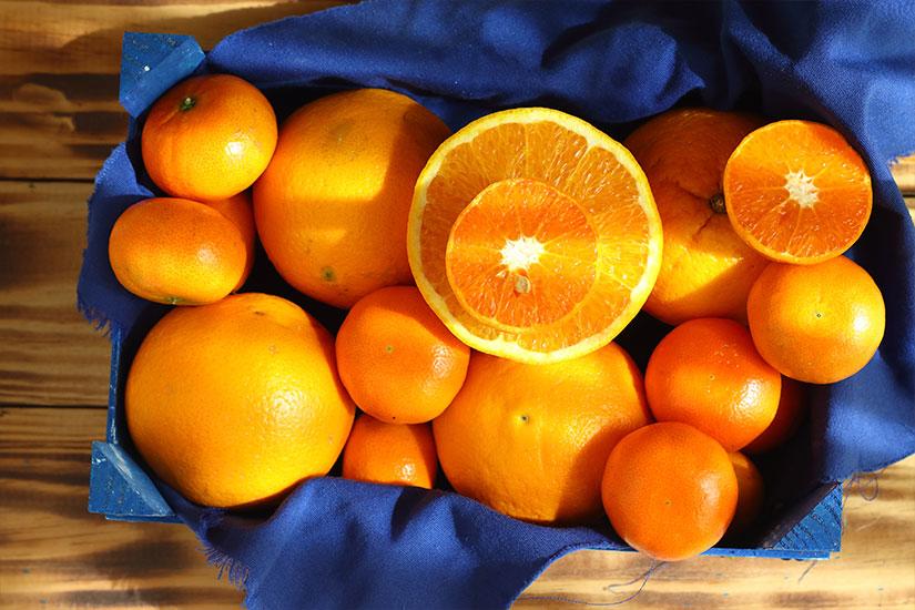 cuales son las naranjas y mandarinas mas dulces - campos de azahar