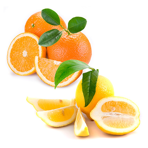 cajas mixtas naranjas limones - campos de azahar