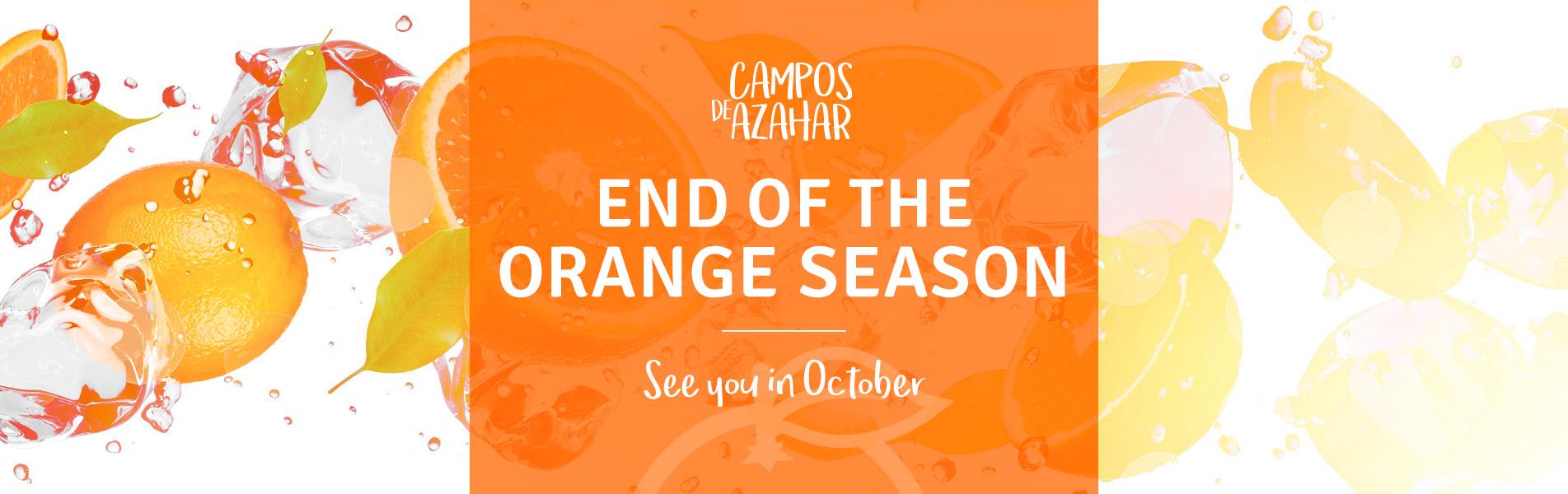 fin temporada naranjas ingles - campos de azahar